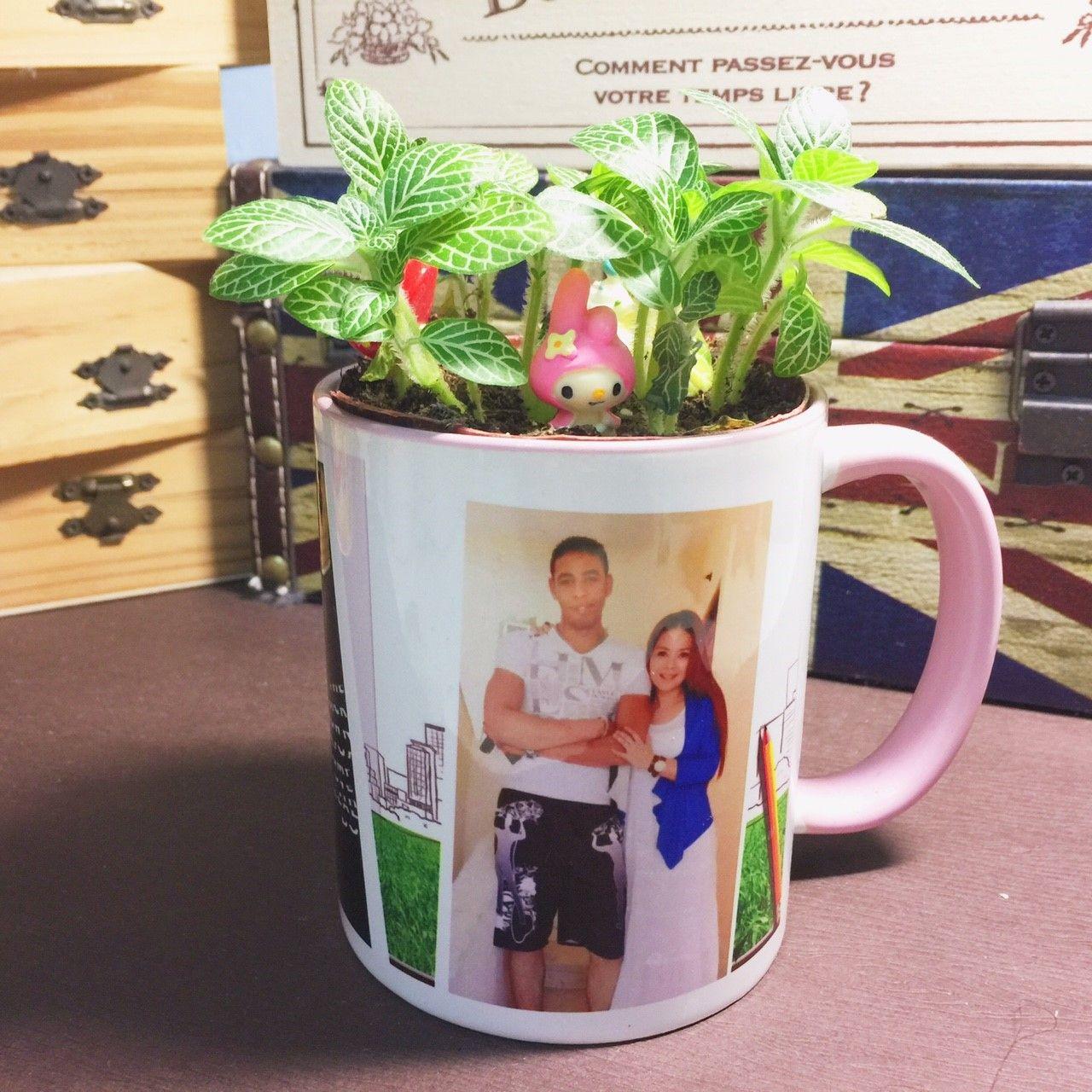 植物馬克杯  馬克杯 轉印